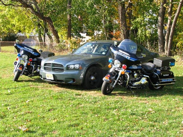 Great police cruiser between two police motorcycles on grass